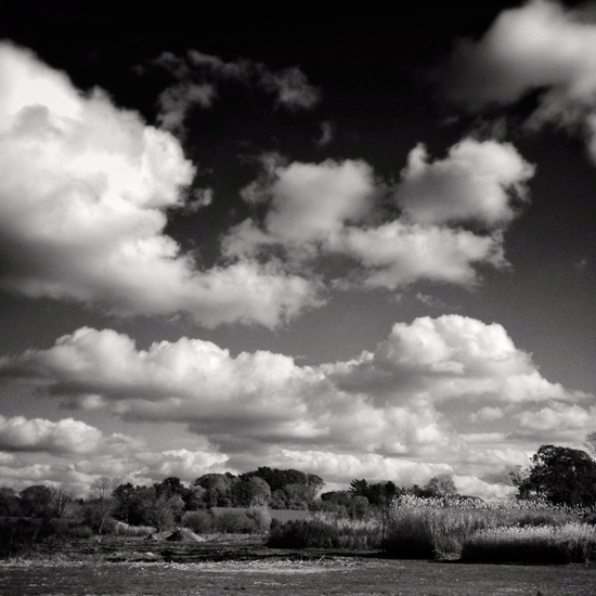fine art photography, spiritual, landscape, heckscher park, black and white photo