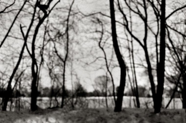 fine art black & white photograph of long island landscape